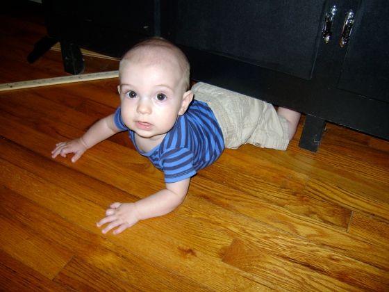 Wedged Under The Cabinet - finddailyjoy.com