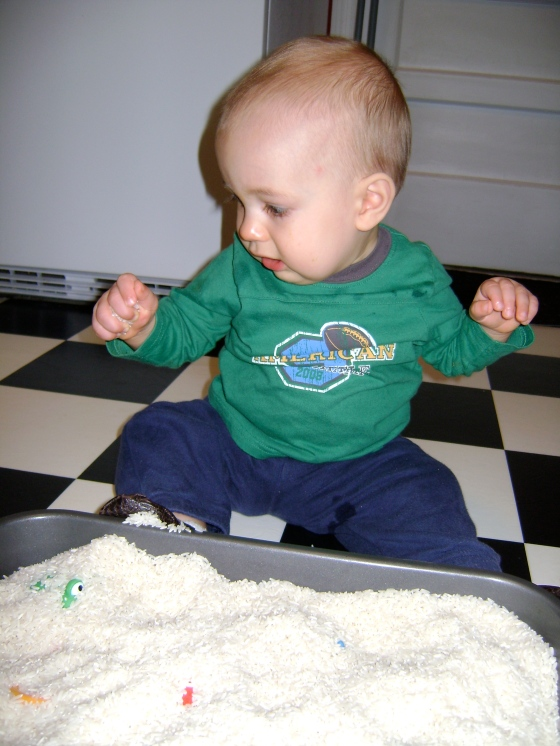 Rice Sensory Bin {Playing With Baby, Day 1} - finddailyjoy.com