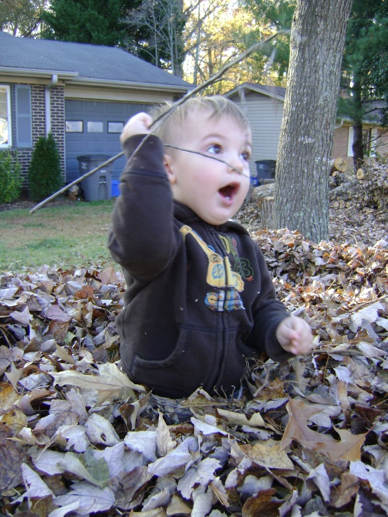 Playing In The Leaves - finddailyjoy.com