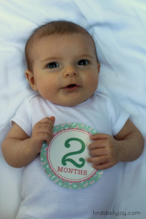 Lily - Two Months - finddailyjoy.com